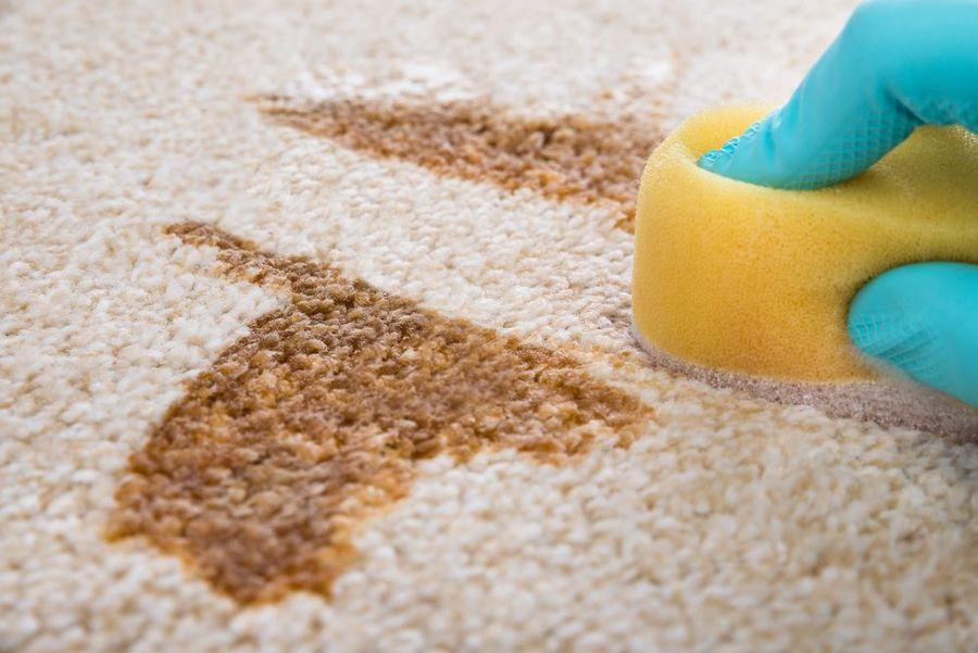 Стирка паласа и удаление пятен в домашних условиях