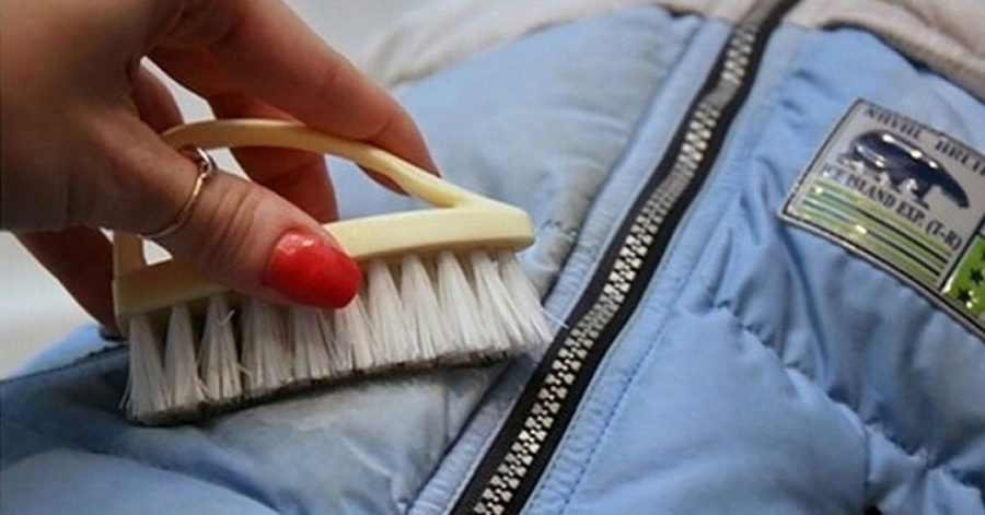 чистка куртки щеткой