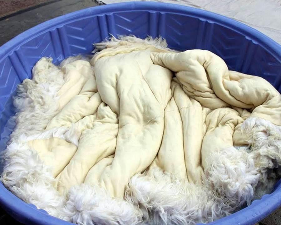 Как постирать и высушить овечью шкуру