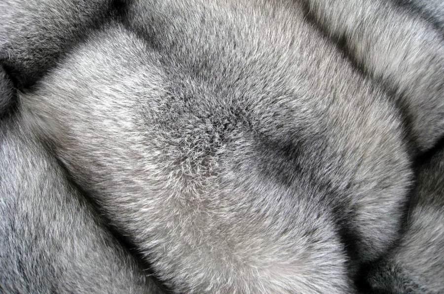 Серый мех
