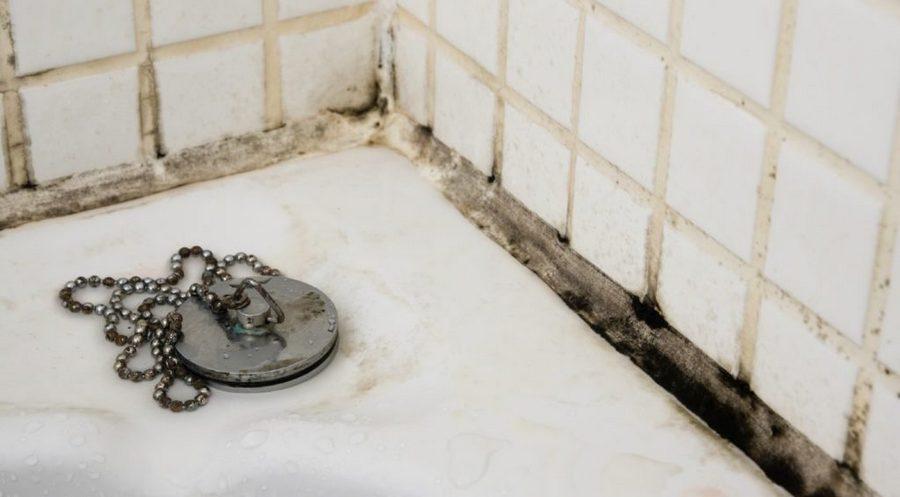 грибок на ванне